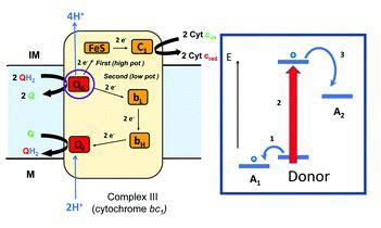 HOT ChemComm articles for March – Chemical Communications Blog