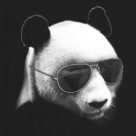 SoySauce - Thug Panda (Delamare Remix) by Inspire Records